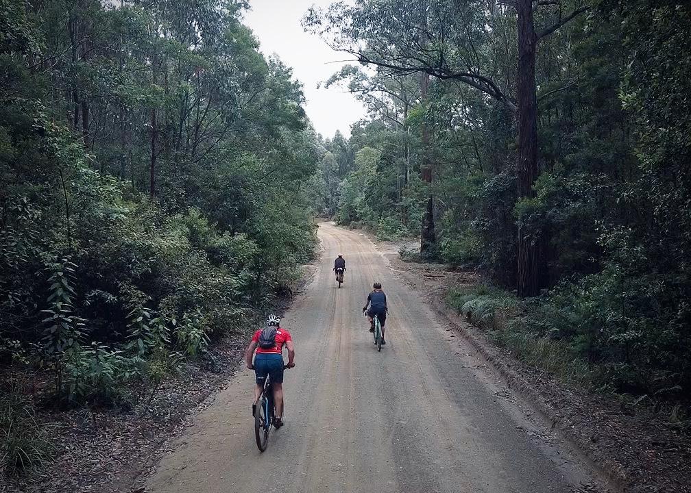 gravel road on the Wyong & Laguna Gravel cycling Loop