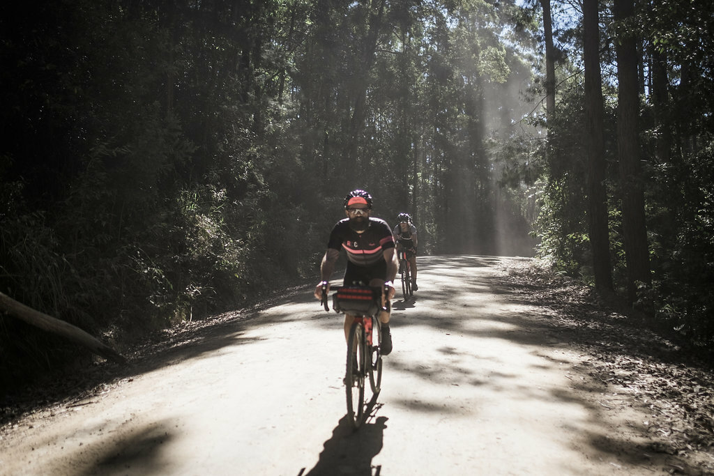 Beechworth Granite Classic feature image, gravel cycling through a forest in Victoria, image by Bob Barrett