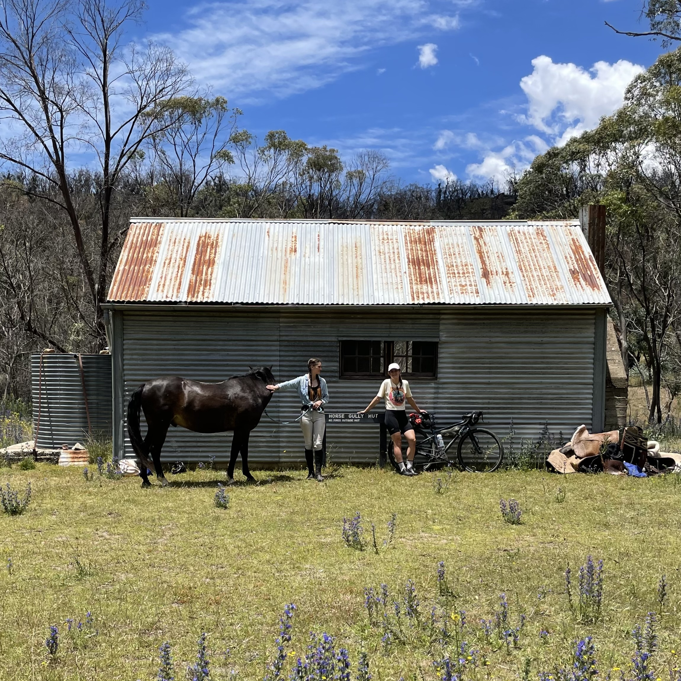 Horse camping and bikepacking to Horse Gully Hut