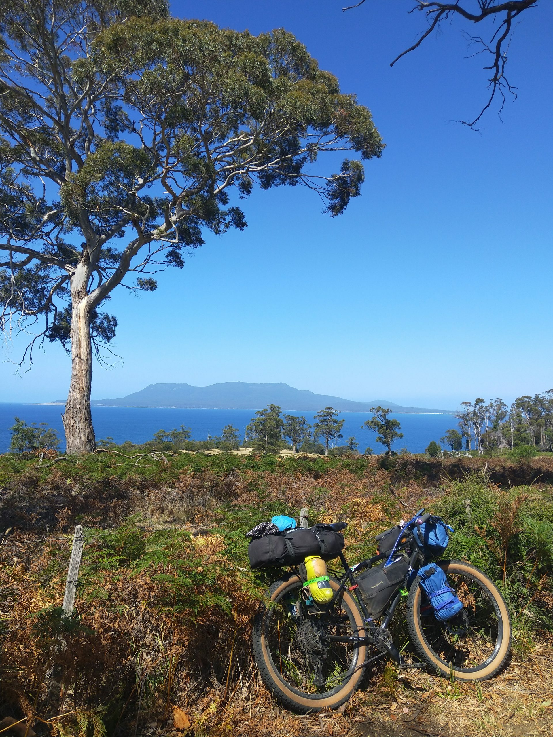 Surly bikepacking rig on the coast of Tasmania