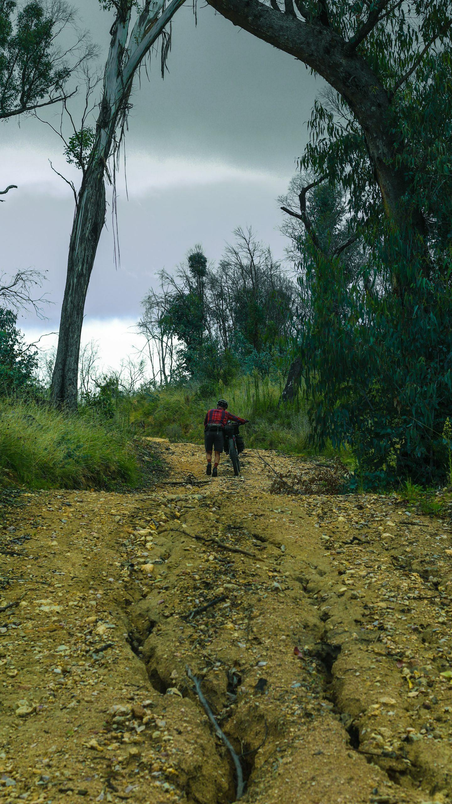 Hike a bike on the Naas River Fire Trail