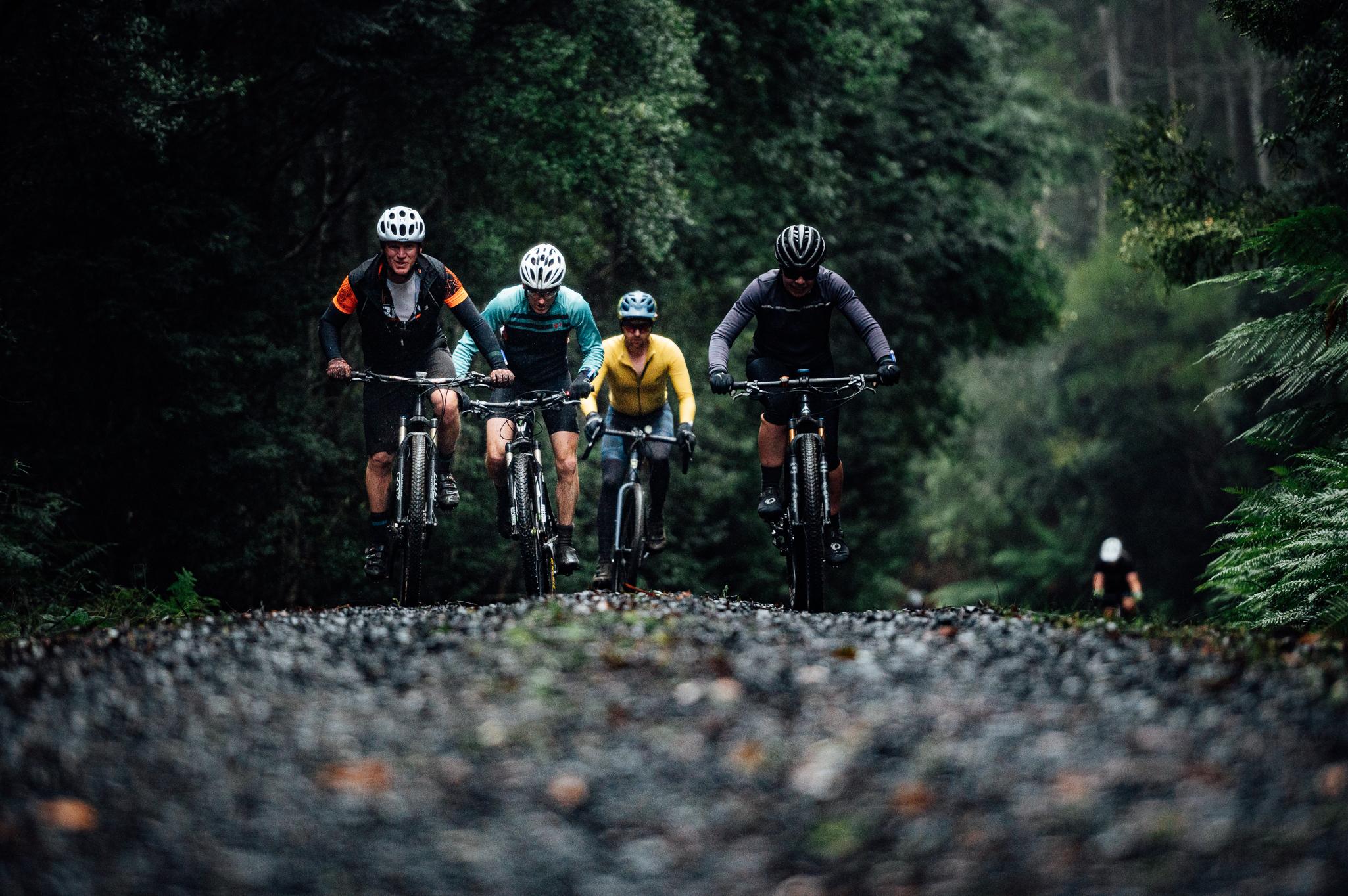 The devils cardigan Tasmanian gravel race feature photo