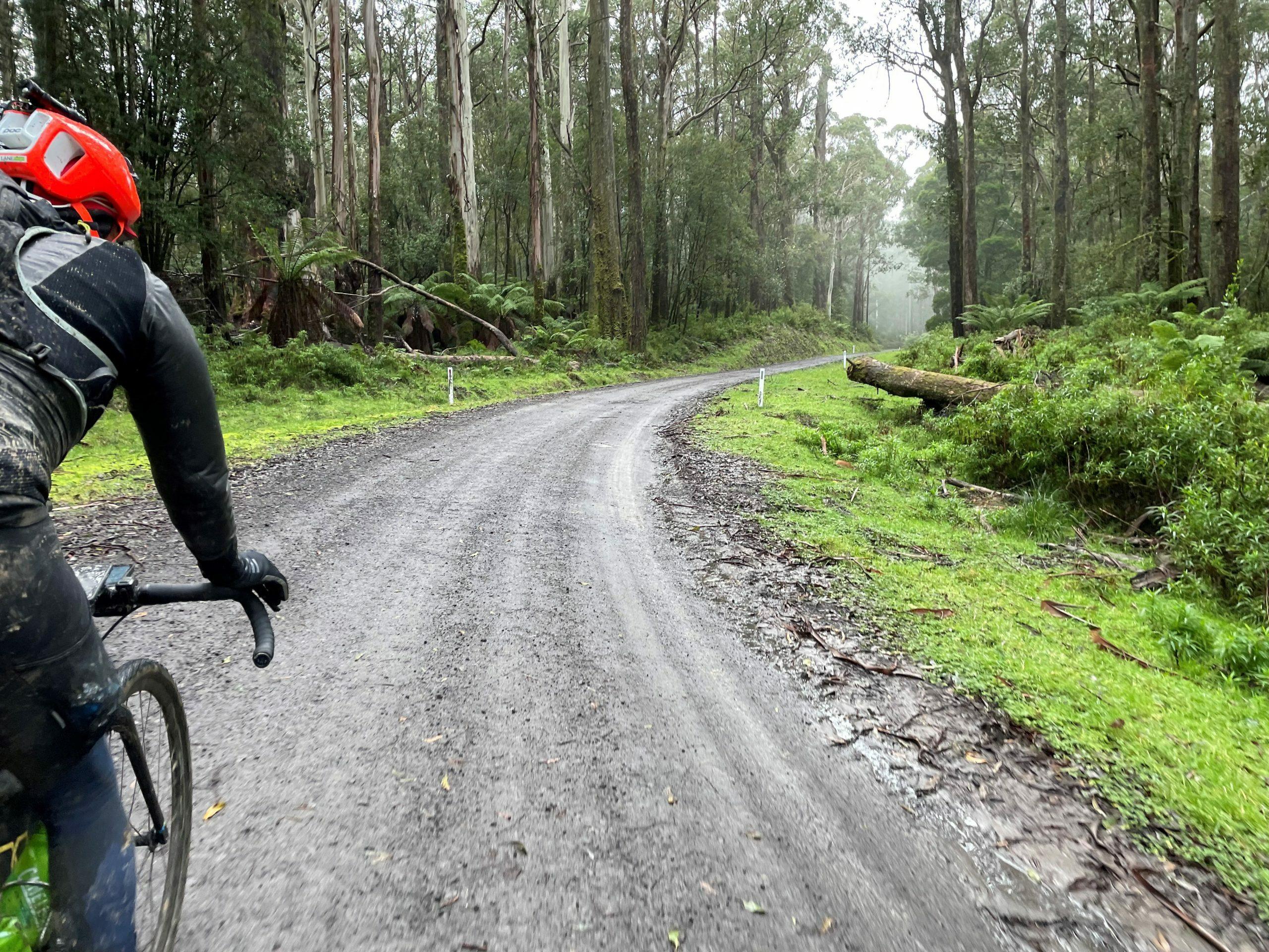 Riding in the Otways on the winter solstice 300, rider recap by Steven Sullivan
