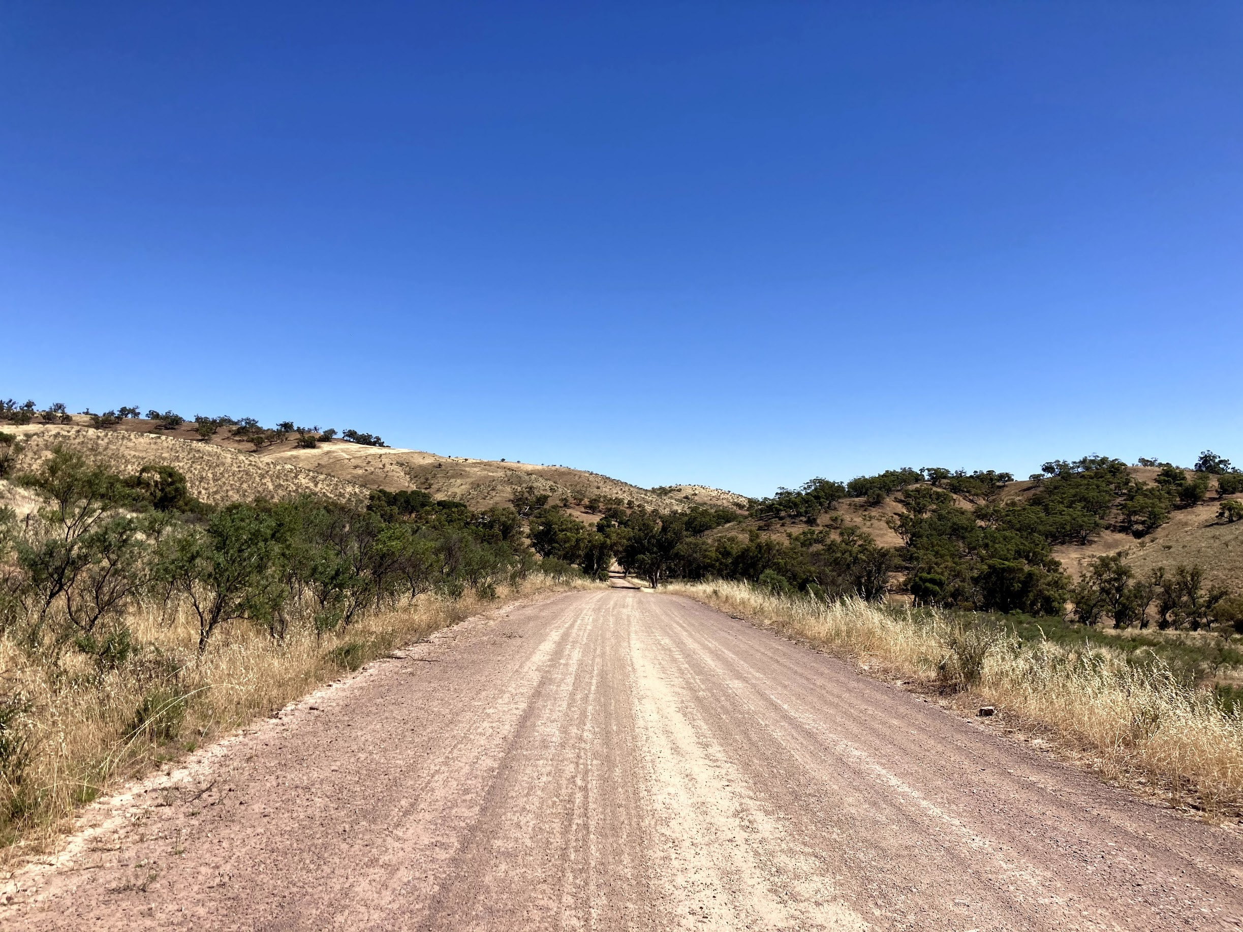 Dry track riding the Mawson Trail in Summer